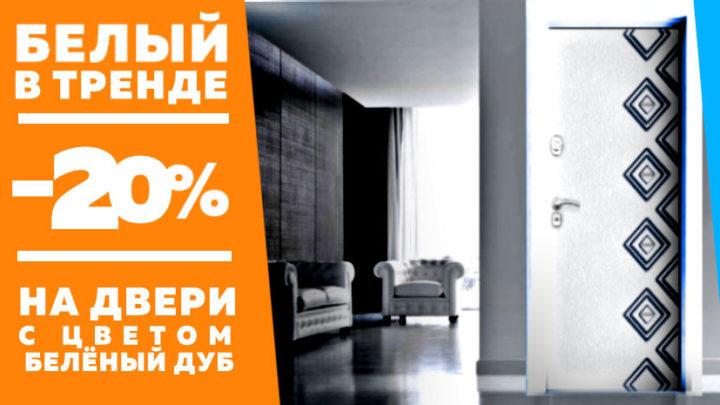 Входные двери со скидкой 20% на заказ в СПб Дверилеон